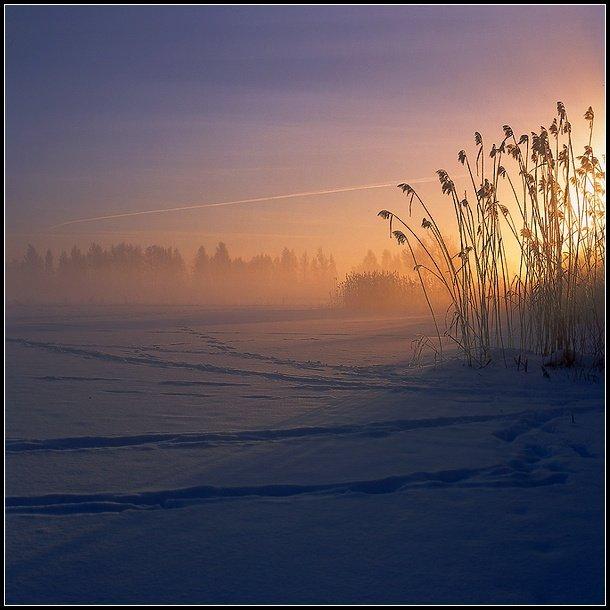 зима туман рассвет, Григорий Иващенко