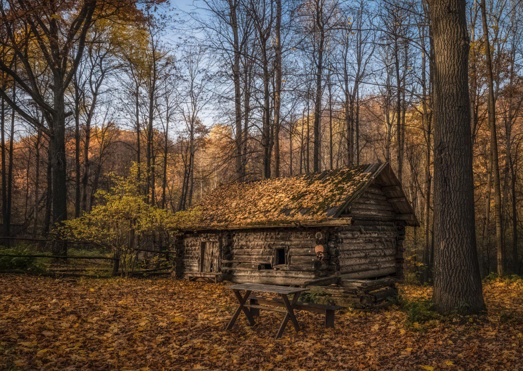 октябрь. заброшенная банька. музей деревянного зодчества., Колесов Андрей