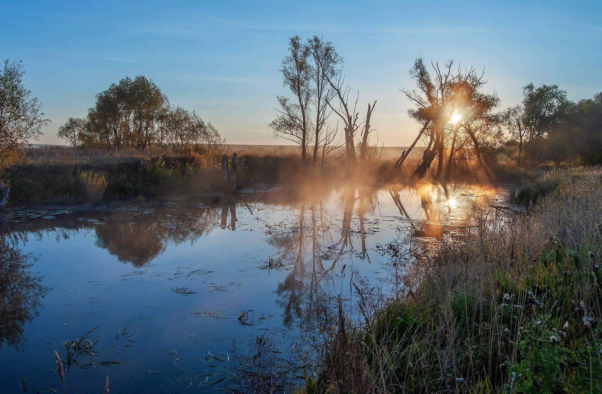 утро, рассвет, лето, солнце, осень, туман, река, дерево, Andres Ganenkoff