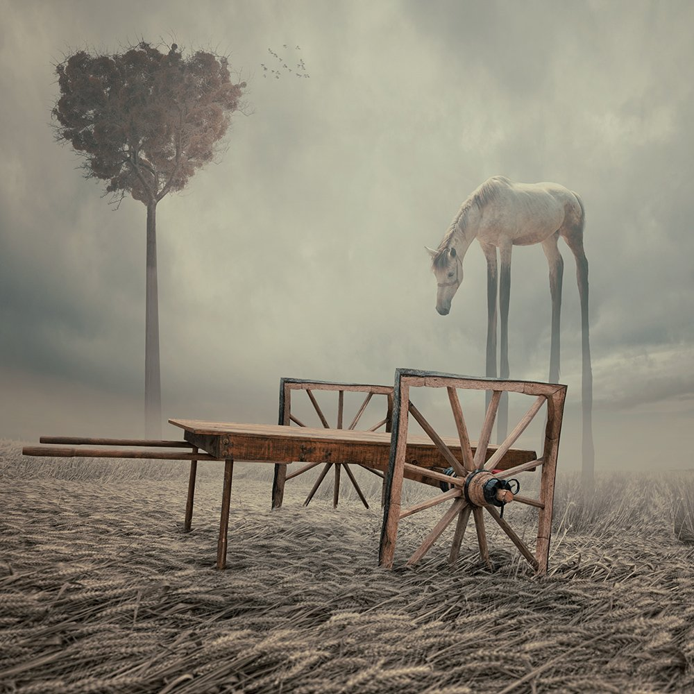 tree, square, cart, ground, grain, clouds, photoshop, manipulation, toned, tutorials, psd, horse, long, legs, Caras Ionut