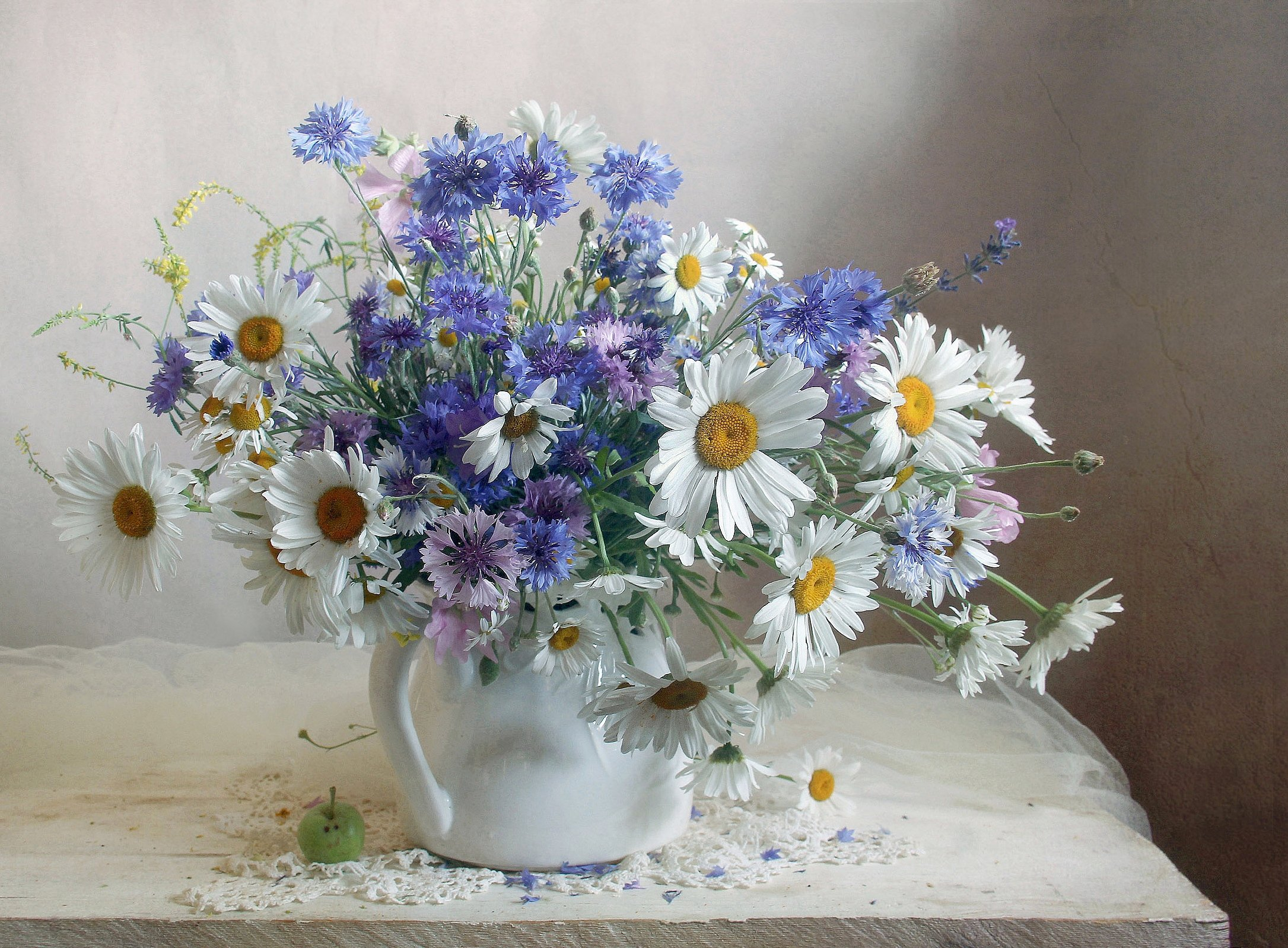 Луговые цветы. Фотограф Филатова Марина