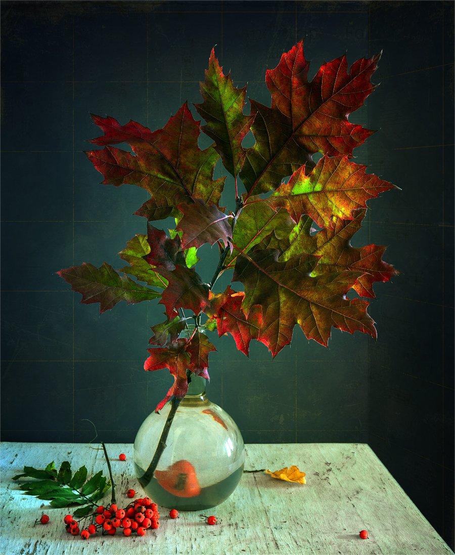 still life, натюрморт,    винтаж,  ветка, дуб, листья, дубовые листья, рябина, ягоды, Шерман Михаил