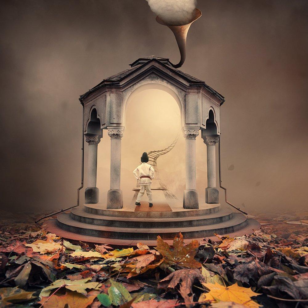 entrance, gate, child, cloth, light, portal, psd, tutorials, manipulation, leaf, ladder, stone, door, mist, trumpet, mystery, ground, Caras Ionut