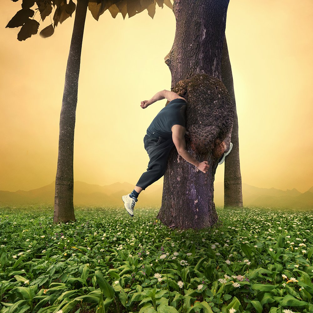 clouds, flowers, green, jumper, leaf, light, man, manipulation, orange, psd, roof, sky, sport, tree, tutorials, yellow, Caras Ionut
