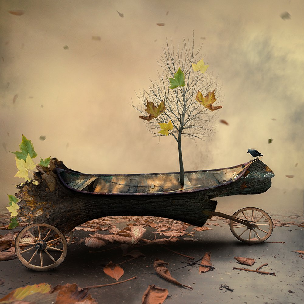 boat, leaf, clouds, bird, design, drums, floating, wheel, light, manipulation, pastel, photoshop, round, psd, read, shadow, smoke, tree, tutorials, water, wood, Caras Ionut