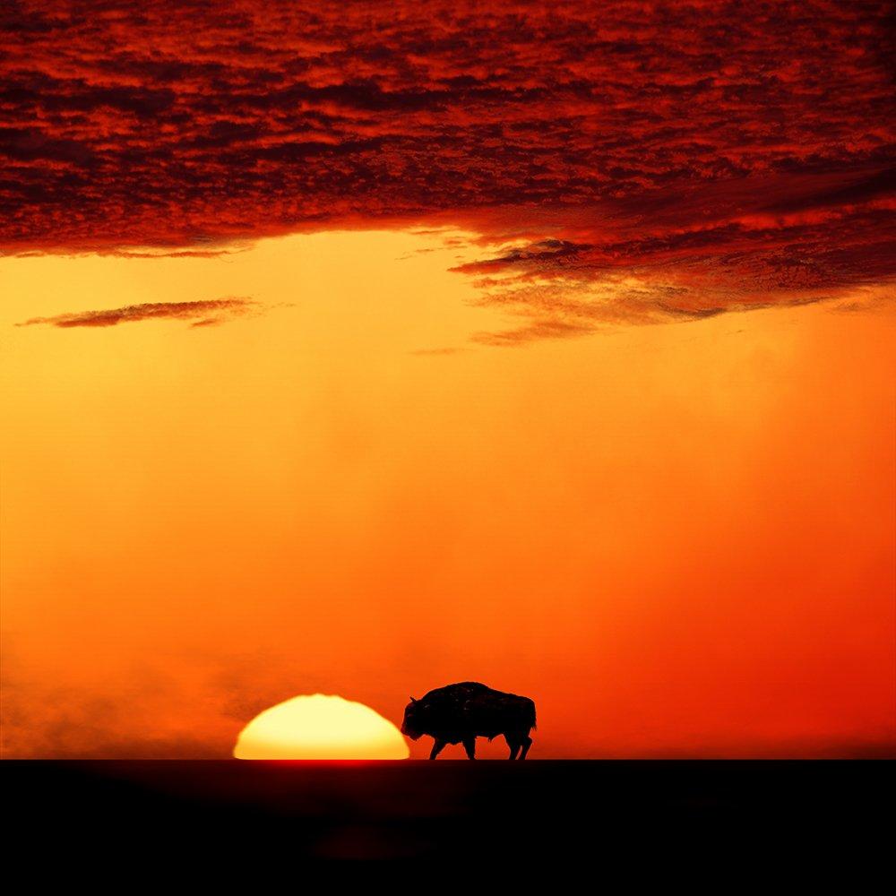aurochs, burning, clouds, corn, friend, girl, ground, head, heat, ioana, light, low, manipulation, mounting, mounting happy, orange, psd, red, reflection, sky, spinner, stage, sun, tutorials, wheel, Caras Ionut