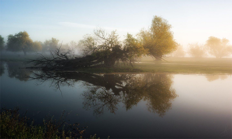 вертячка, пейзаж, природа, рассвет, тишина, туман, Будин Николай