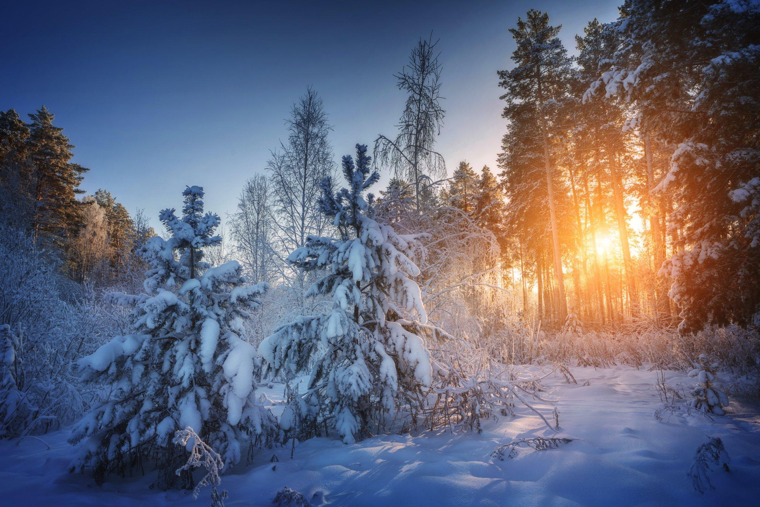 озеро, горы, лес, природа, закат, рассвет, красота, приключения, путешествие, облака, Шевченко Николай