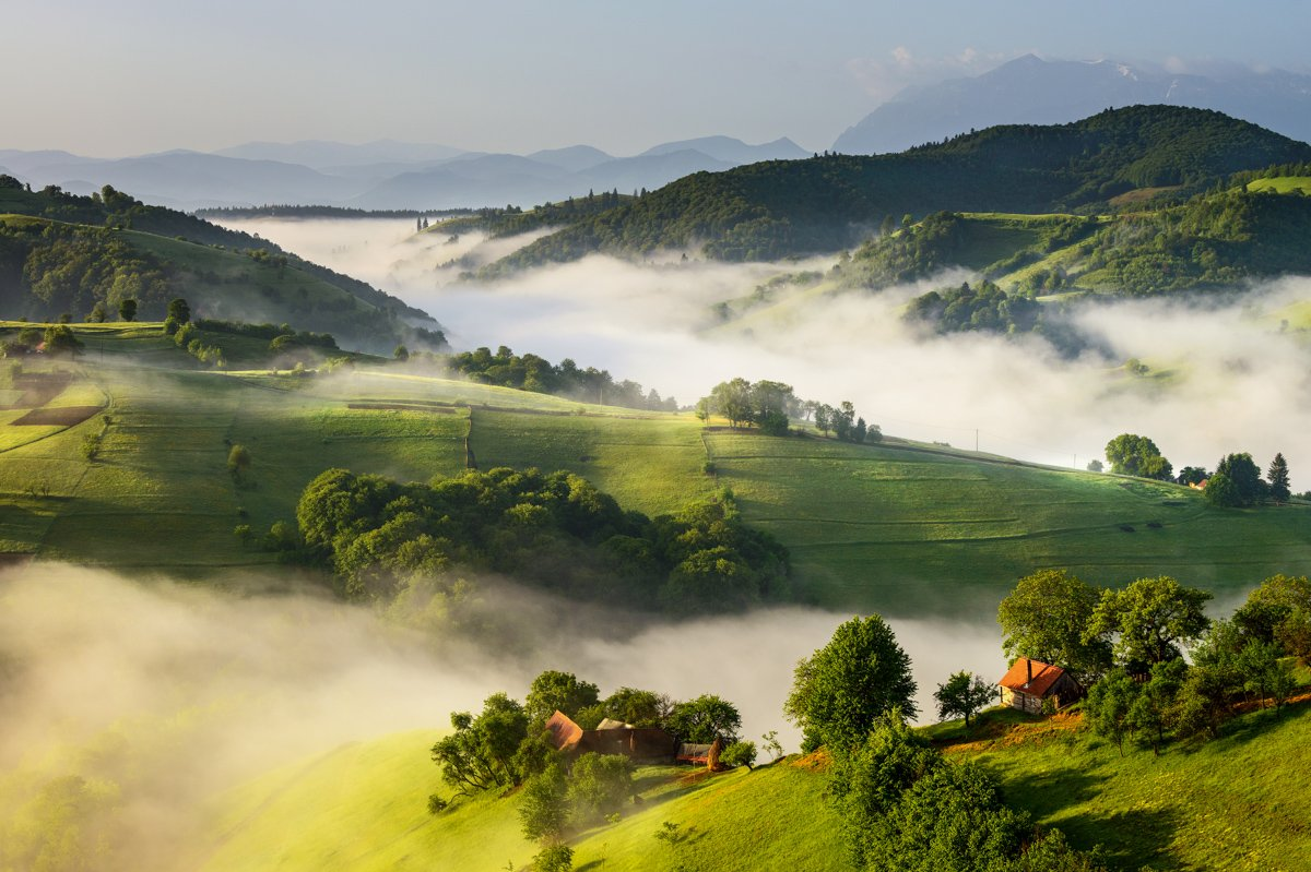 Fog, Hill, Landscape, Nature, Ioan Chiriac