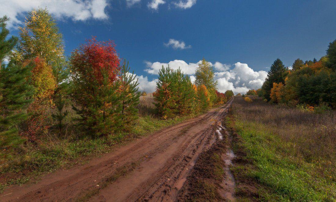 дорога, колея, деревья, лес, краски, осень, облака, Георгий Машковцев