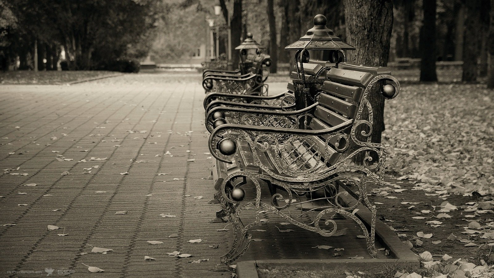 осень, парк, скамейки, листья, грусть, Serj Master