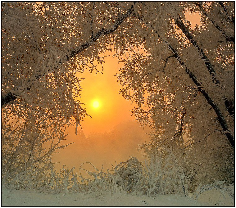 зима, рассвет, иней, снег, свет, Григорий Иващенко
