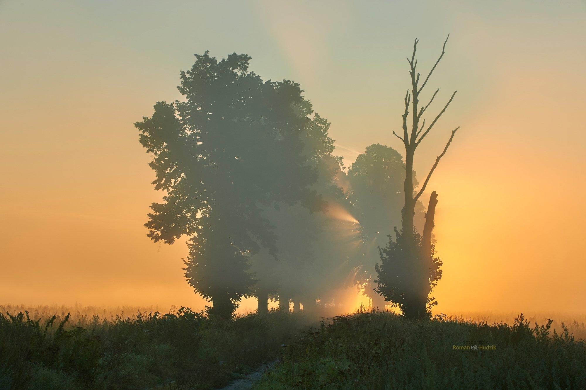 Misty morning, sunrise, landscape, fog, clouds, fields,, Hudzik Roman