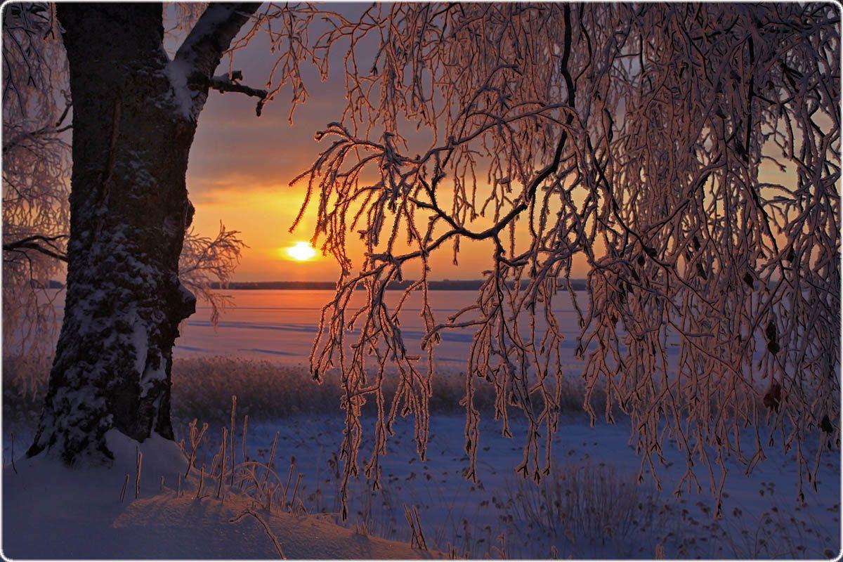 Зимнее утро ... Valtteri Mulkahainen