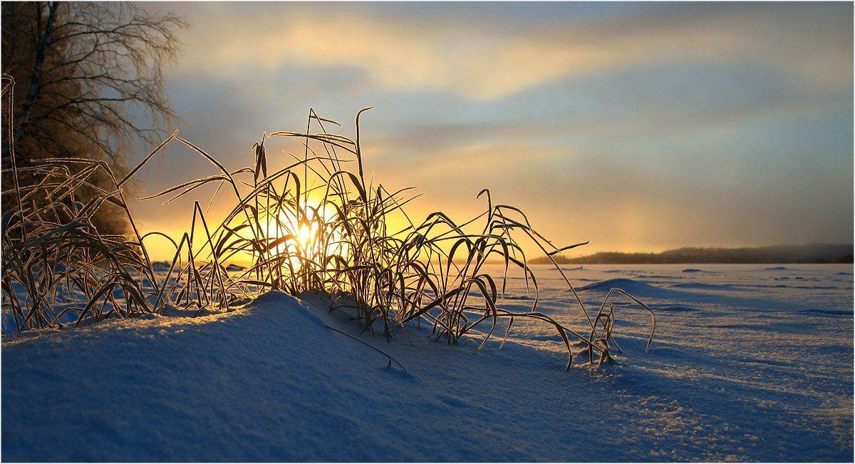Морозное солнце уходящего дня ... Valtteri Mulkahainen