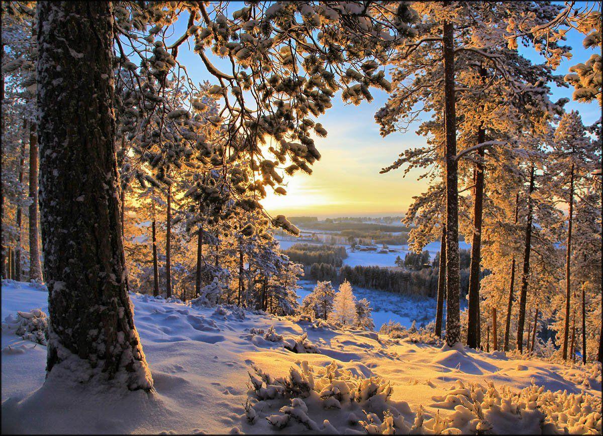 Морозным вечером ... Valtteri Mulkahainen