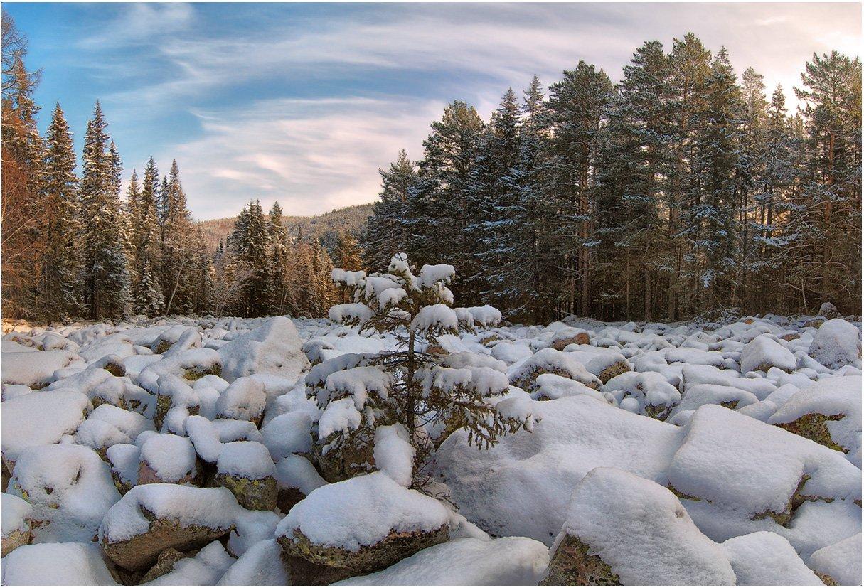 в тёмный, претёмный лес пришла зима..., Клековкин Алексей