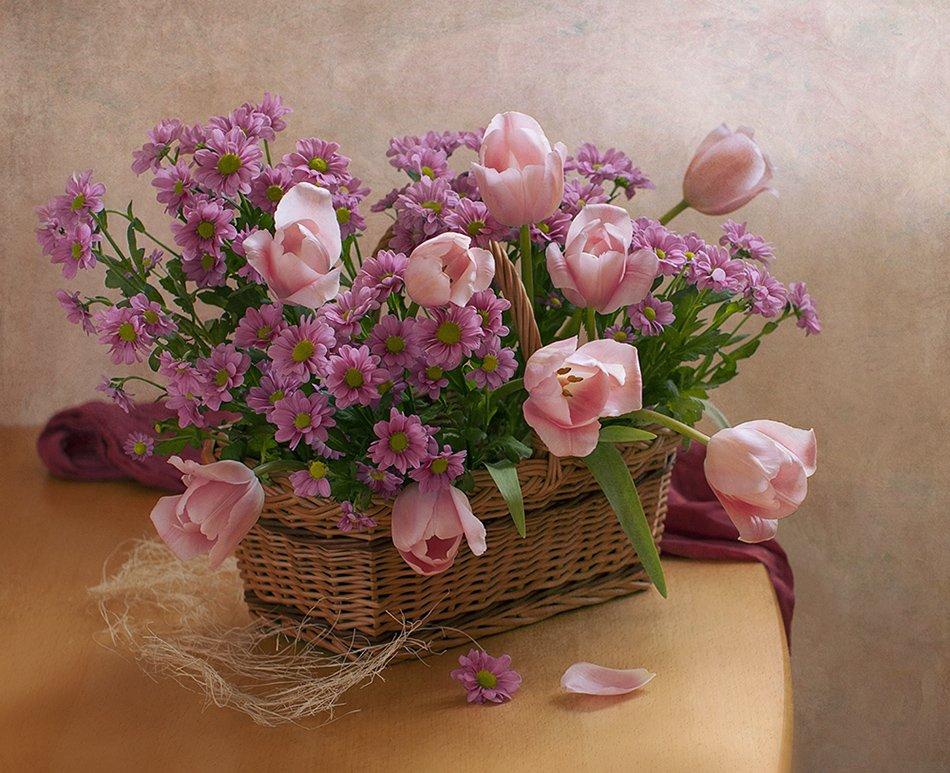 цветы, Elena Lo