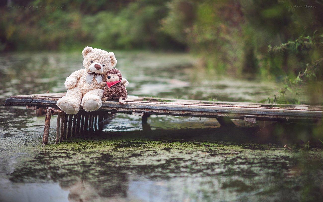 Пятница, прикольные картинки с ежиком и медвежонком