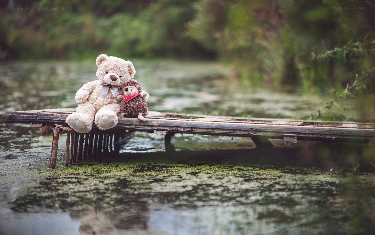 Картинки с ежиком и медвежонком