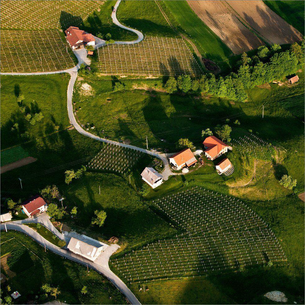 Словения, Нетушки