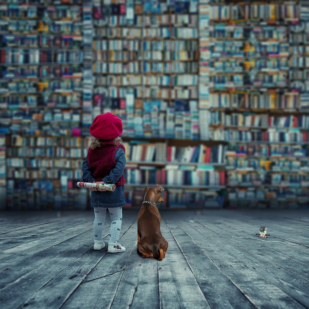 girl, dog, book, newspaper, carasdesign, manipulation, psd, tutorials, Caras Ionut