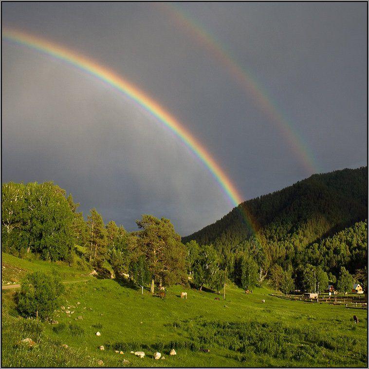 алтай, горы, горный алтай, элекмонар, радуга, аня графова, Аня Графова
