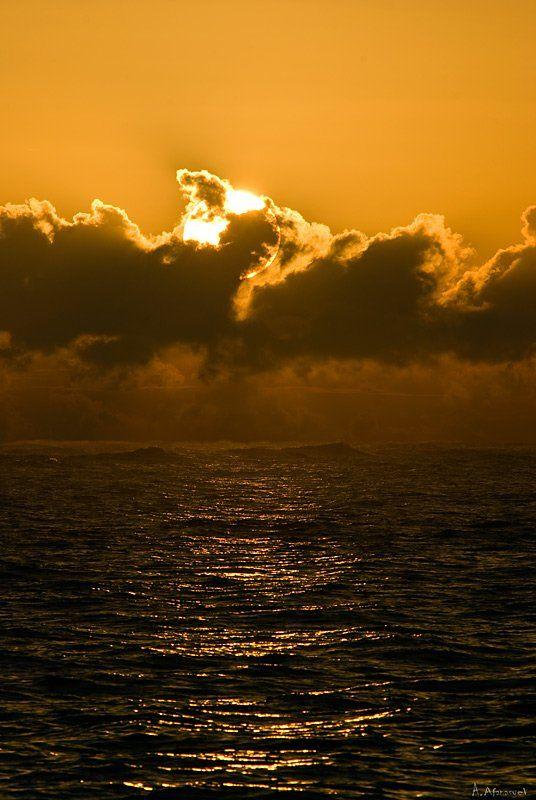 море, атлантика,расвет,доминикана,республика, antonio