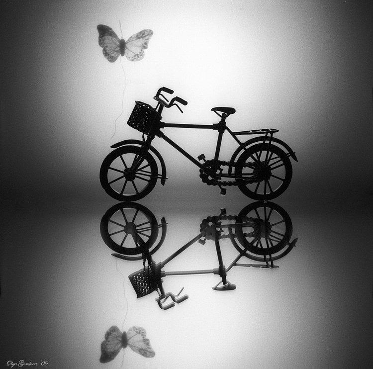 фото, натюрморт, бабочка, Ольга Горелова