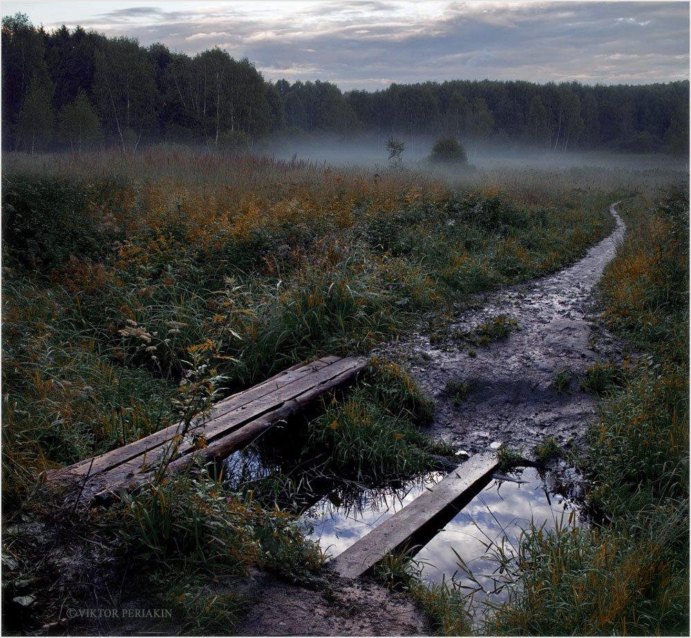 узкое, мостки, утро, туман, Виктор Перякин