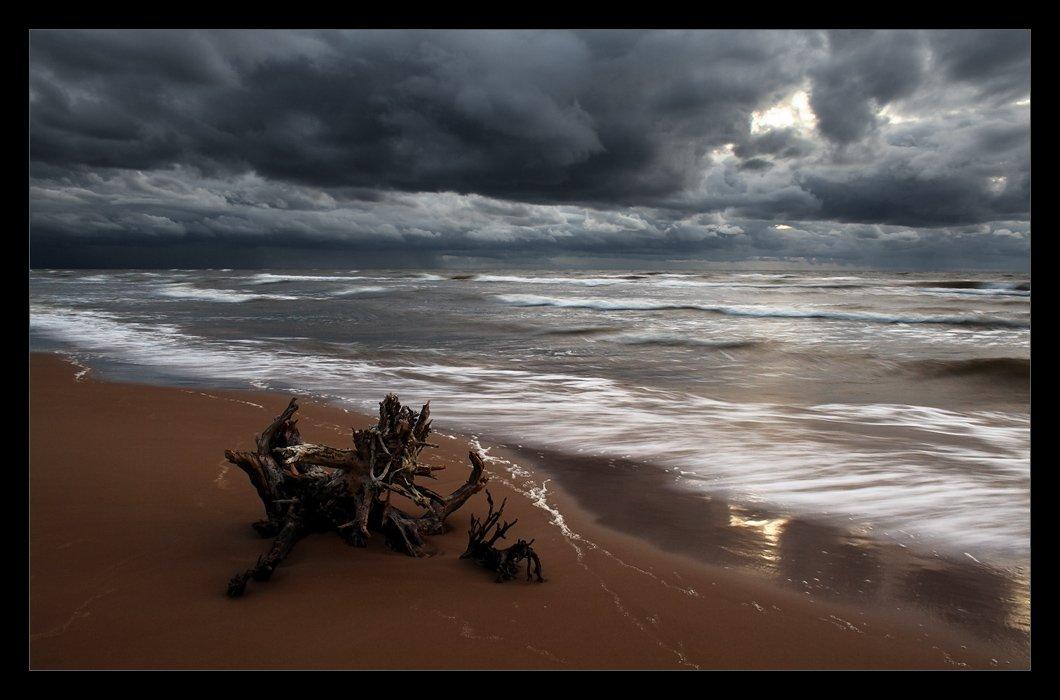 море, волны, коряга, облака, ветер, осень, Karlis Keisters
