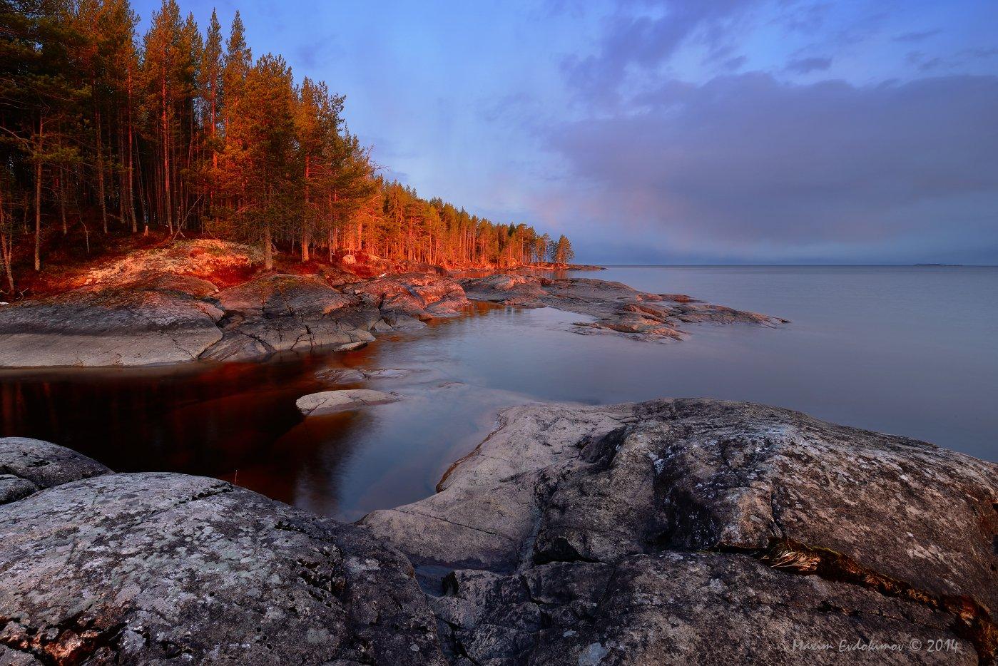 Онего, Онежское озеро, Максим Евдокимов