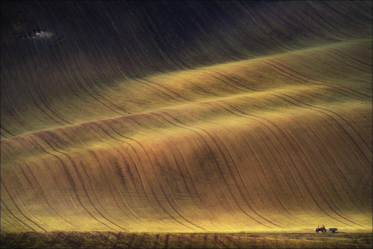 Czech republic, Light, Line, Moravian, Surfer, Волны, Ландшафт, Осень, Поля, Свет, Сёрфер, Фототур, Чехия, Южная Моравия, Влад Соколовский