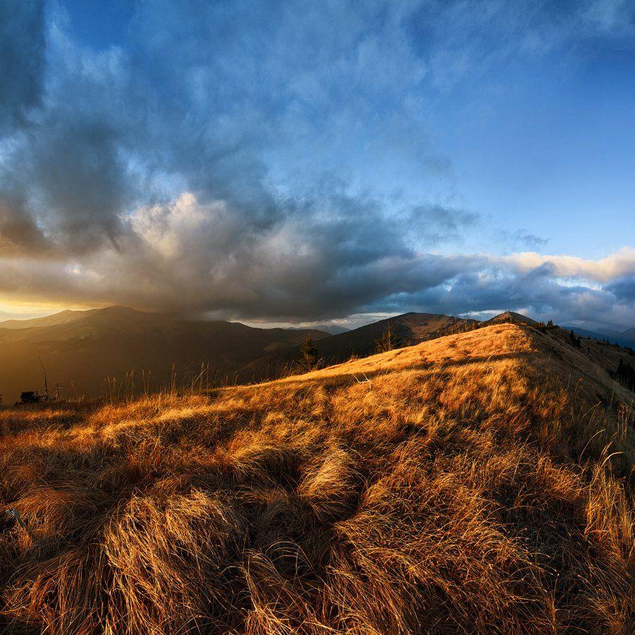 Закат, Карпаты, Квадрат, Облака, Оранжевый, Панорама, Свет, Трава, Украина, Антон Горлин