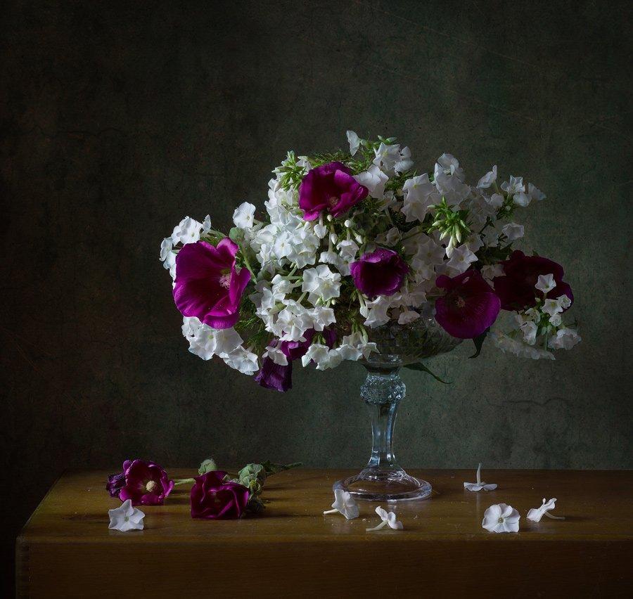 мальва, натюрморт, флоксы, цветы, Курочкина Диана