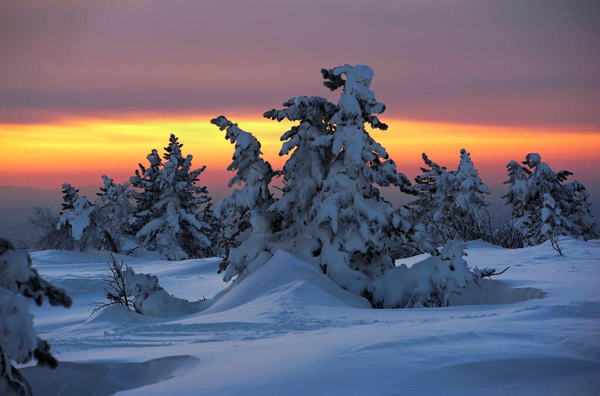 гора курган, горная шория, зима, кедры, красочный вечер, сибирь, снег, шерегеш, Валерий Пешков