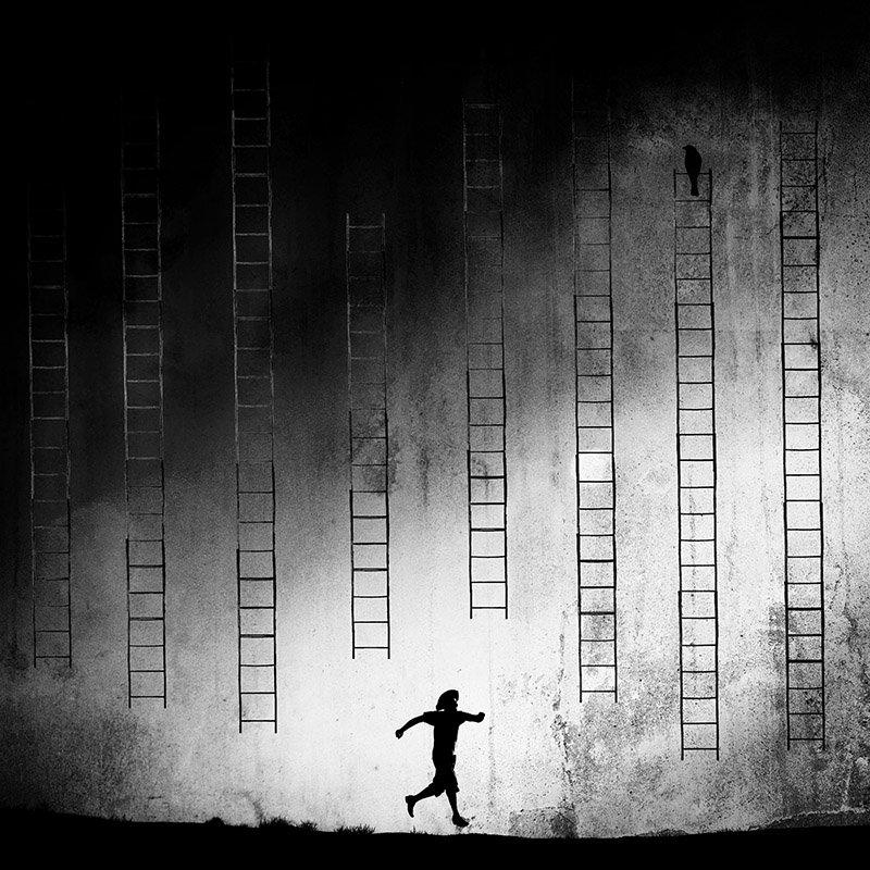 concept, conceptual, fine art, milad safabakhsh, ladder, bird, human, blackandwhite, milad safabakhsh