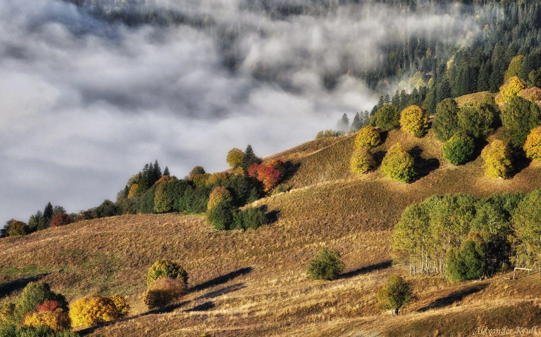 Кавказ, Кчр, Александр Круль