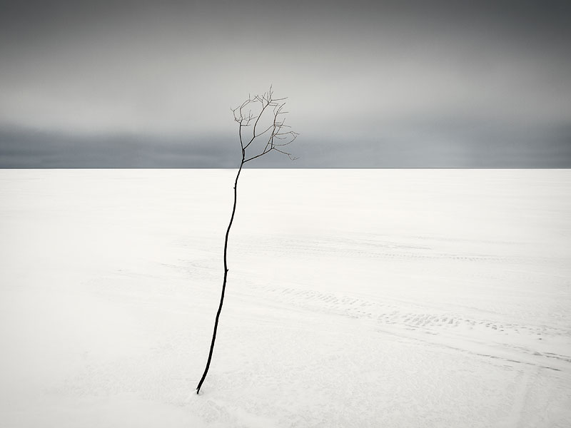 Зима, Минимализм, Снег, Федотов Антон