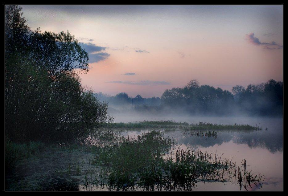 пейзаж, утро, туман, река, Юлия