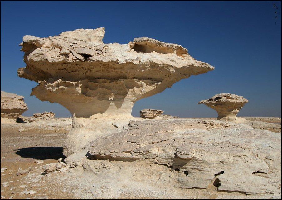 africa, egypt, libyan desert, sahara, western desert, white desert, африка, белая пустыня, египет, западная пустыня, ливийская пустыня, сахара,, Оксана Борц