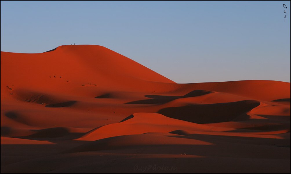 африка, марокко, africa, morocco, maroc, магриб, песок, дюны, пустыня, сахара, sand, dune, desert, sahara, эрг-шебби, erg-chebbi, merzouga, мерзуга, Оксана Борц