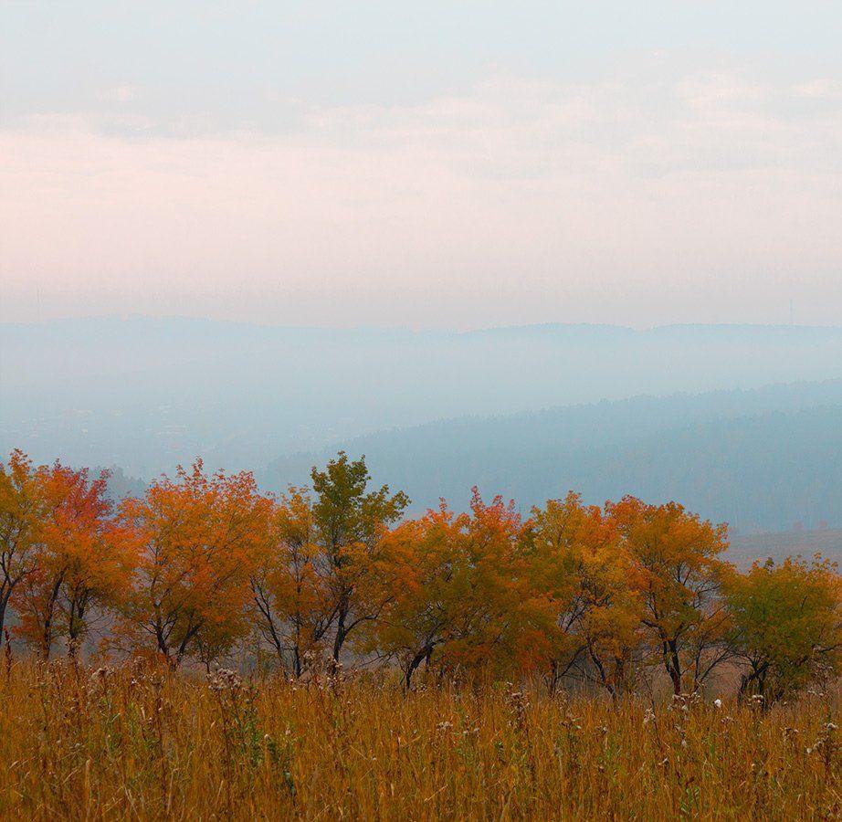 голубой, желтый, осень, туман, Курочкина Диана