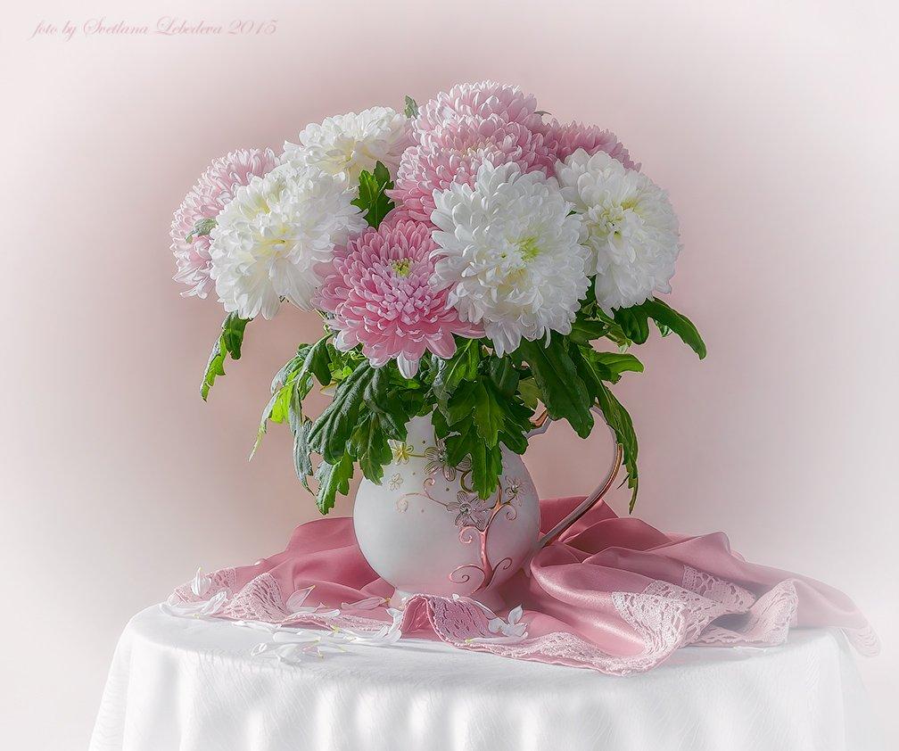 Букет, Хризантемы, Цветы, Лебедева Светлана