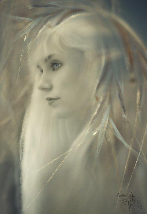 нимфа, трава, фентези, девушка, портрет, Ольга Брага (Eglantier)