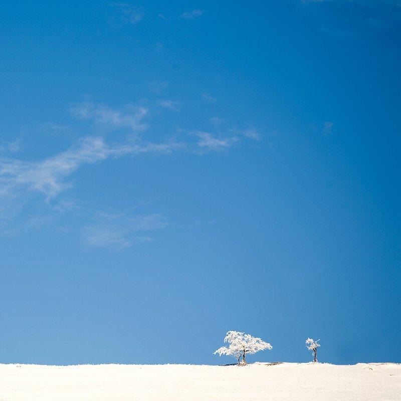 горы, зима, крым, деревья, снег, минимализм, Юрчик Шиндин