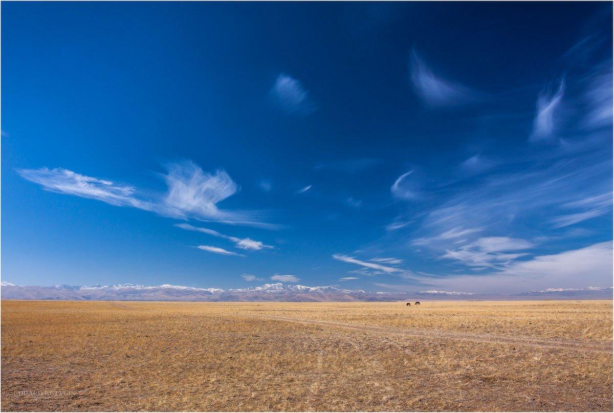 чуйская степь южно-чуйский хребет золотая осень конь лошадь прасутся кони пара облака , Кутыгин Эдуард