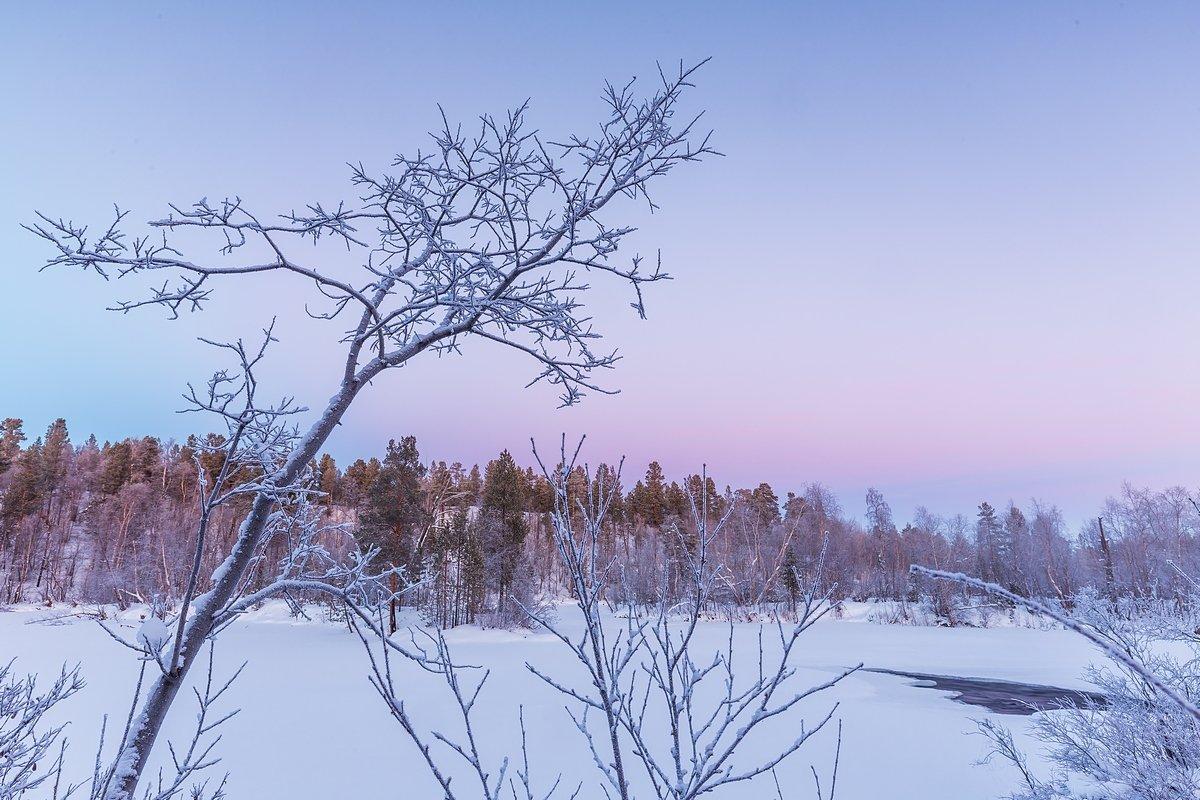 Шуонийоки, зима, сумерки, полынья, никель, печенгский район, мурманская область, кольский полуостров, Кирилл Уютнов