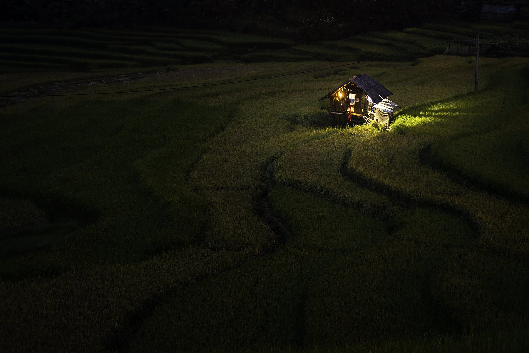 Asia, Asian, Field, Landscape, Night, Nikon, Rice, Terraces rice field, Thailand, Vietnam, Saravut Whanset