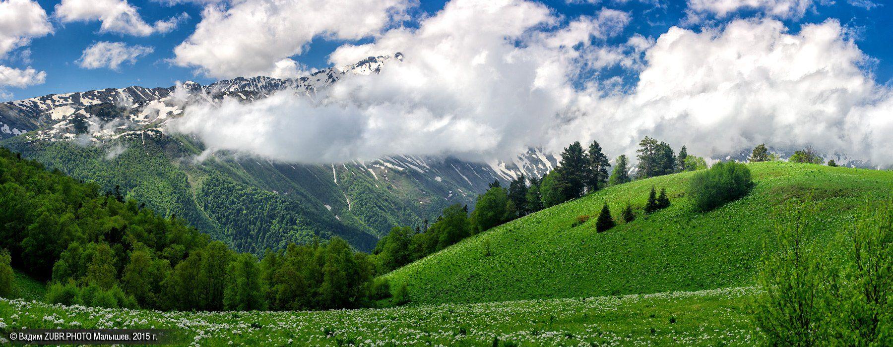 панорама, пейзаж, горы, заповедник, лето, облака, zubrphoto, Абаго, Кавказ, Вадим ZUBR Малышев